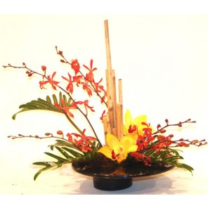 Orchids and Bamboo with Tropical Foliage - PF65