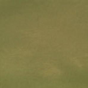 Moss Green Taffeta