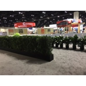 4' x 4' Live Hedge Planter Boxes - PF017