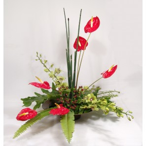 Red Anthurium with Green Orchids - PF85