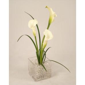 White Mini Callas and Liriope in Square Container - PF75