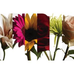 Wholesale Floral - PF23